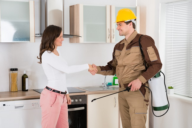 Image Result For Trained Home Protection