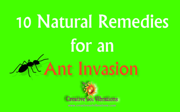 All Natural Remedies Cold Sores