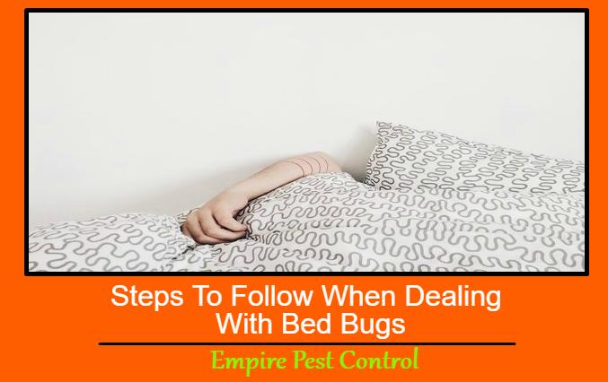 Natural Remedies Bed Bug Repellent