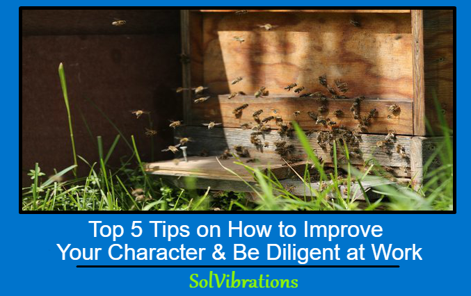 Top 5 Tips On How To Improve Your Character And Be Diligent At Work