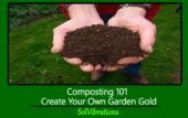 Composting 101: Create Your Own Garden Gold