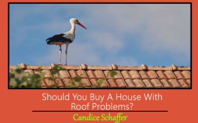 Should You Buy A House With Roof Problems?